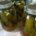 pickles-pickled-cucumbers-recipe-3
