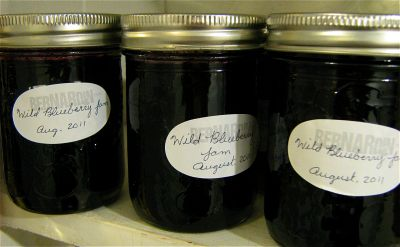 canning-101-blueberry-jam