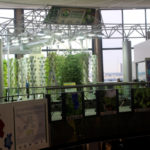 ohare-airport-chicago-urban-garden