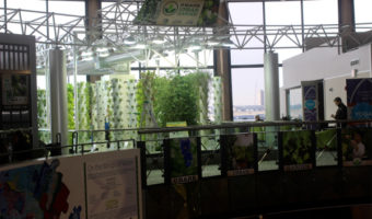 The Urban Garden, Yoga Room, and Local Food at O'Hare Airport in Chicago