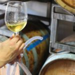 Sonoma Wine Tasting and Restaurants: An Organic Itinerary